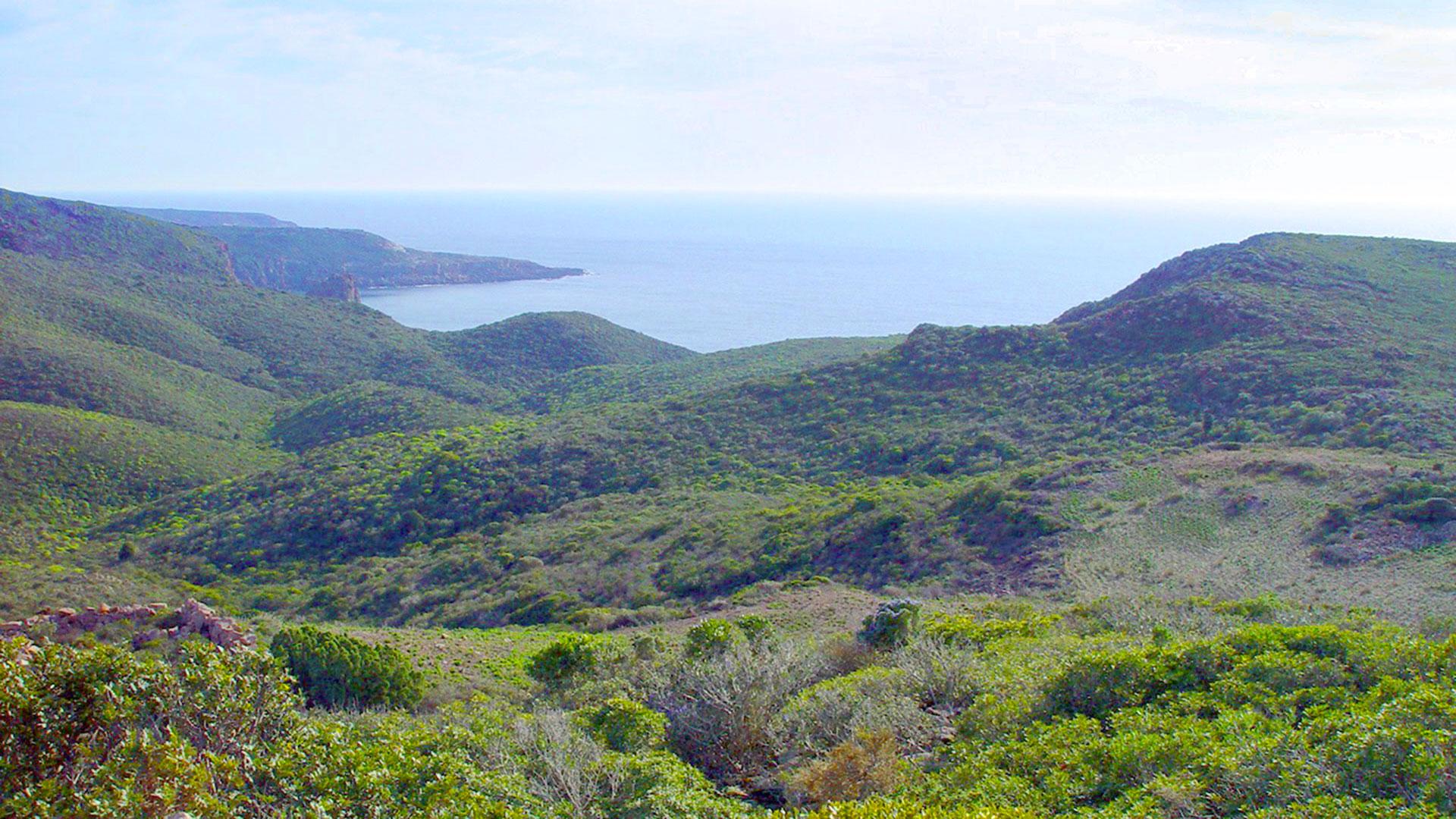 Isola di San Pietro, Punta-Cannoni
