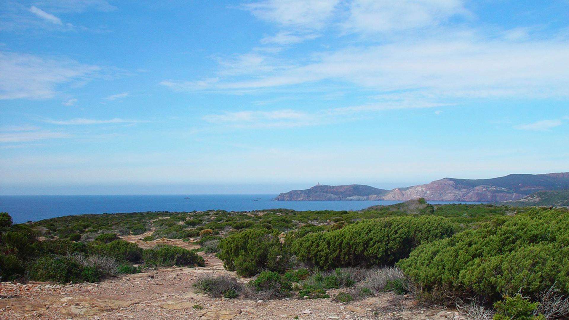 Isola di San Pietro, Lo-Spalmatore.